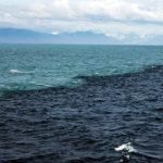 🌊 😲 Una frontera de agua donde impactan dos océanos
