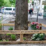 🍆 La ciudad de la moda, ahora también capital de la agricultura urbana