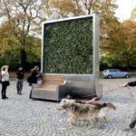 🌳 Un árbol que elimina la contaminación del aire