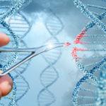 🔬 ¡Increíble! Modifican el ADN en un hombre vivo