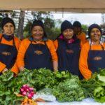 Mujeres y agricultura urbana sostenible