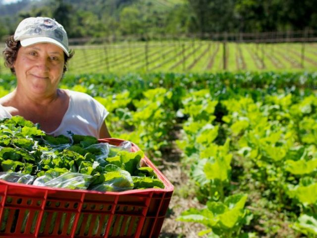 🌻 ¿Es posible alimentar al mundo y salvar el planeta?