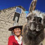🌞 Iluminan el primer pueblo 100% solar de Argentina