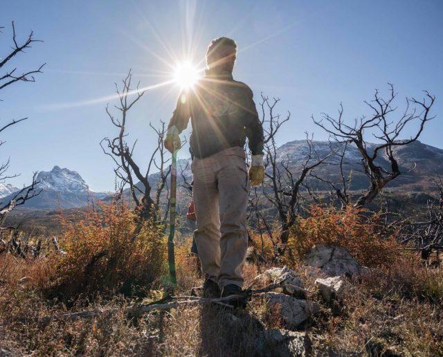 Voluntários plantam 11.500 árvores para recuperar a floresta queimada na Argentina 3