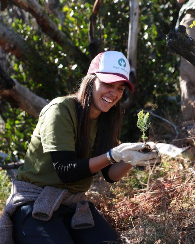 Voluntários plantam 11.500 árvores para recuperar a floresta queimada na Argentina 4