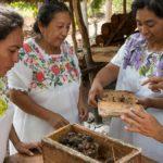 🐝 Mujeres que salvan abejas y se empoderan como empresarias