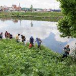 🌳 Voluntarios plantarán 2000 árboles a orillas del Riachuelo