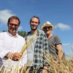 Un joven granjero y un diseñador crean un sorbete de paja natural