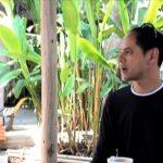 🐘 Juntos fabrican papel orgánico hecho con Caca de Elefante