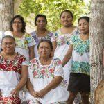🐝 Mujeres salvan abejas y se empoderan como emprendedoras