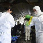 Coronavirus: insólita reducción de contaminación ambiental