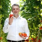 🍅 ¡La Mega Huerta de Tomates que Crecen en el Desierto!