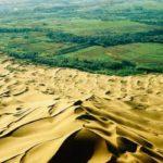 🌳 ¿Por qué África construye una Gran Muralla Verde?