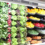 🍎🍏La Primera Ciudad Argentina que Prohíbe el uso de Plásticos para vender Frutas y Verduras