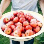 🍎🍏 ¡Arboles con frutas gratis en toda la Ciudad!