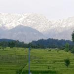 ⛰ El Himalaya es visible desde India por primera vez en 30 años