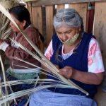 ✨ Mujeres Artesanas tejen Mascarillas con Palma nativa