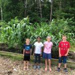 🌱 La Escuela que Cultiva según la Tradición Nativoamericana