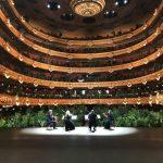 🌿 Un Concierto Sólo para Plantas como Público