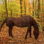 🐎 Artista Crea Inspiradoras Esculturas Orgánicas con Ramas del Bosque