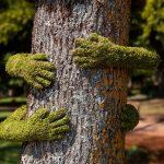 🌳 Este artista 'Abraza' con Amor la Naturaleza para Concientizar a través de su Obra