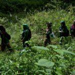 🌱 Una brigada Femenina de Guardabosques lucha por el Medio Ambiente