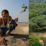 🌳 Molai Plantó un Árbol Cada Día durante 40 Años
